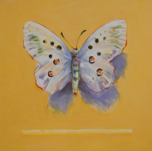 Butterfly on Yellow