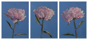 Collection-of-Peonies-Triptych