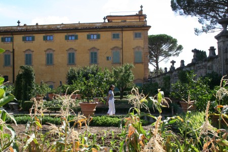 New York University at Villa La Pietra