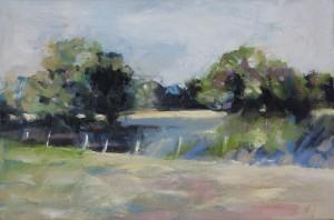 Wivenhoe Field in Summer