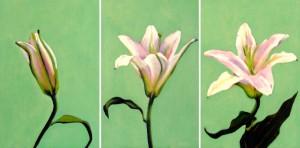 LiliesTriptych copy